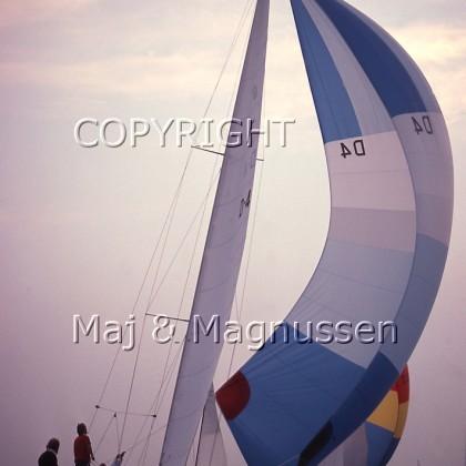 aftensejlads-sejlsport-3.jpg