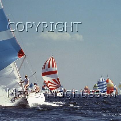sejlsport-sjaelland-rundt-3.jpg